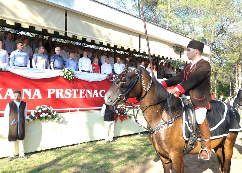 Ured Predsjednice RH, Filip Širanović